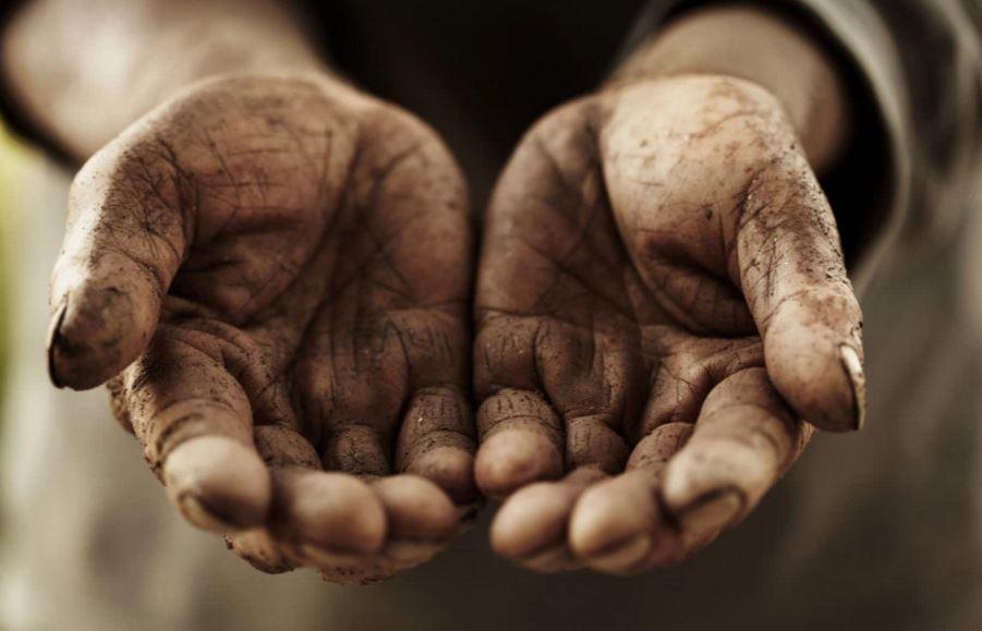 cultiva la humildad